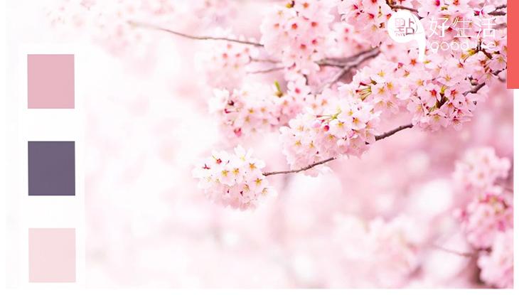 往後就要留意這3個顏色!日本公佈「令和」代表色,象徵全新的時代降臨!