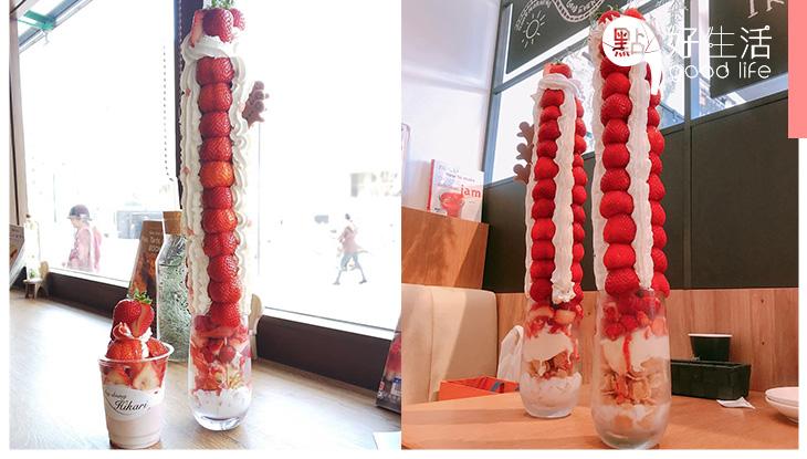 高得嚇人的士多啤梨芭菲! 日本café推45cm「珠穆朗瑪峰」芭菲 索價3700円仍售罄!