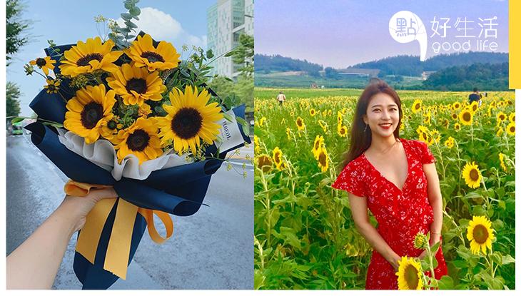花竟然能反映個人性格?細看花之密語,從花朵品種看你的性格!