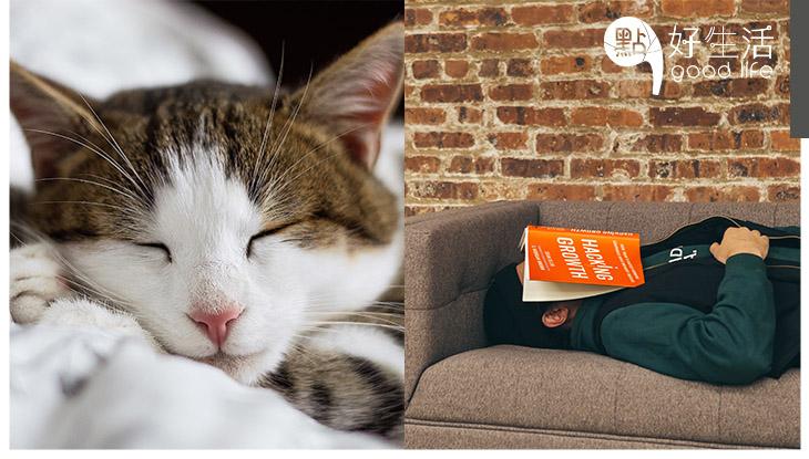 【睡眠哲學】平日睡眠不足,週末「補眠」就可以嗎?其實你和我每天應該睡多久呢?