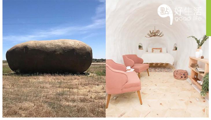 這個巨型薯仔不是用來吃的? Airbnb推奇怪薯仔新民宿! 住客瞬間變小矮人了