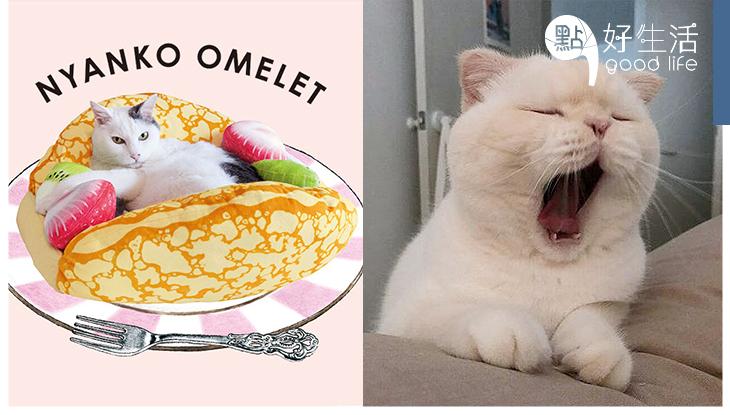 主子滿滿幸福感:日本推「貓咪蛋捲床」貓貓躺上去完全沒違和感,可愛得太犯規!