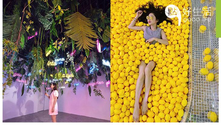 【玩盡大灣區】隨手一拍都是網紅!棉花糖與白日夢深圳站 吸引10萬人次的火爆人氣巡迴展覽!跳進檸檬池內降降溫