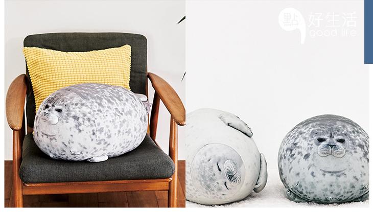 大阪海遊館很會賺!明星海豹Wamo推出「圓圓海豹抱枕」神還原爆紅,好想立即帶回家!