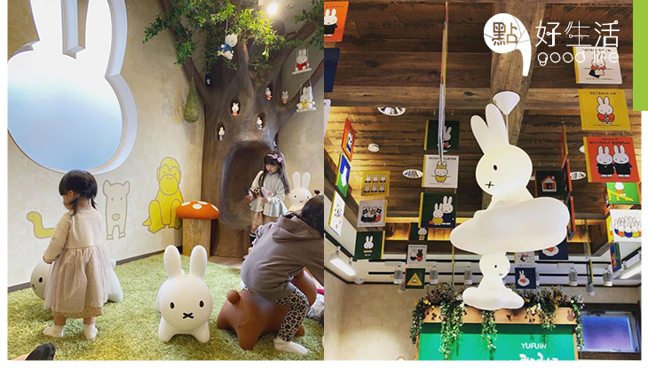 【Miffy 粉絲必到!】日本湯布院開設Miffy森林廚房 2層高麵包店用上森林自然風!兔子形窗戶+Miffy樹成焦點