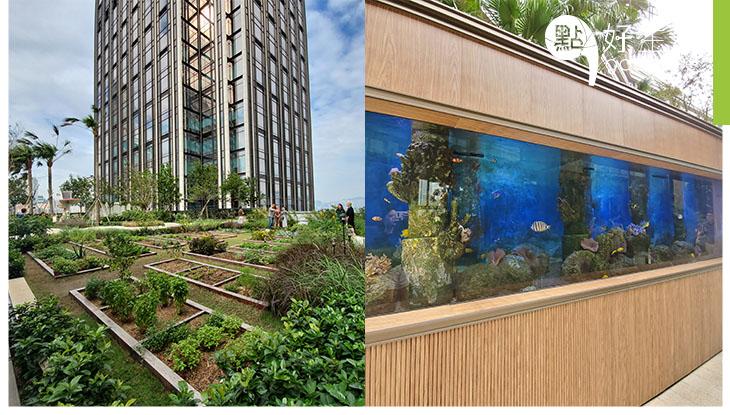 香港首間室內外自然博物館於K11 MUSEA開幕 參加多元化工作坊,體驗都市農耕!觀賞大型水族箱