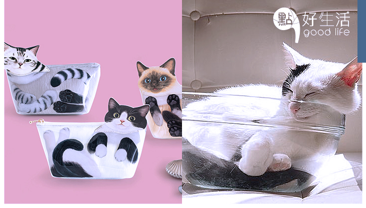 喵最喜歡箱子:日本推出「貓之液體收納袋」展現貓咪柔軟身驅,可愛又實用!