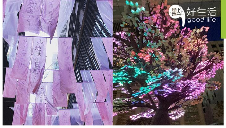 【年度賞櫻盛事】日本東京日本橋櫻花節 10萬粒LED燈組成發光櫻花樹!現場表演因疫情變網上直播,安在家中齊齊看!