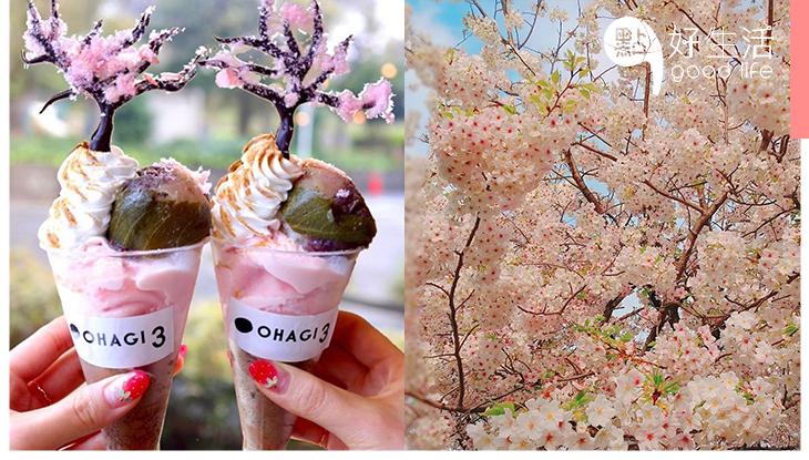 捧在掌心的櫻花樹!日本草餅專門店「OHAGI3」推期間限定櫻花雪糕芭菲,堪稱最浪漫的甜點!