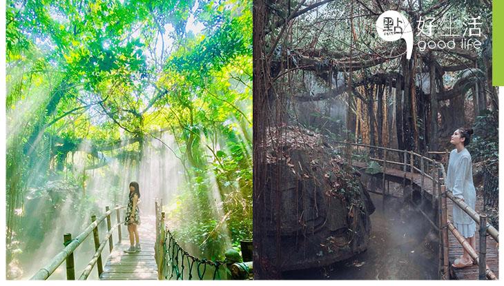 太誇張吧!夏日避暑勝地深圳青青世界 竟連熱帶雨林也做出來!恍如去了亞馬遜森林一趟