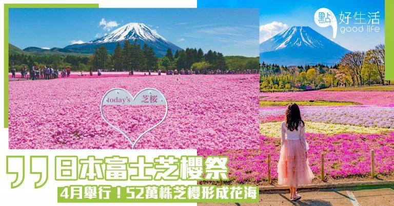 【年度必去】日本富士芝櫻祭將於4月舉行!以富士山為背景,配上8個品種、共52萬株芝櫻形成花海,超殺底片的景色!同場加映富士山美食節,多款富士山形狀特色美食