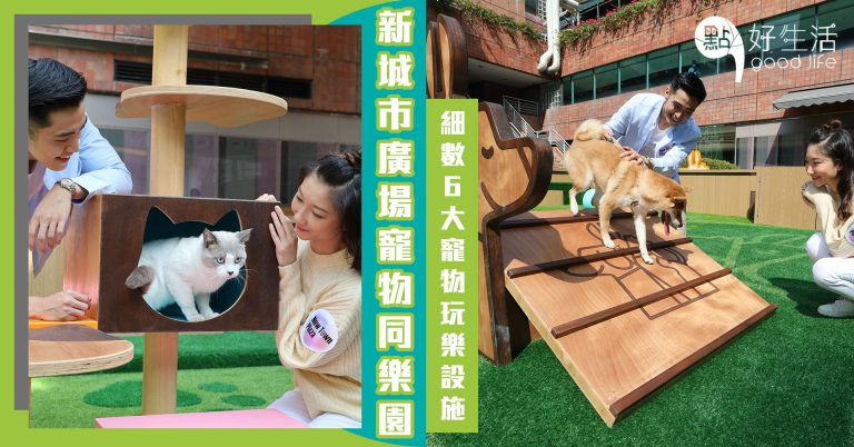 【毛孩樂園】主子放電啦~沙田新城市廣場Pets Park 寵物同樂園正式開幕!設歷奇區+野餐區,細數6大寵物玩樂設施打卡點