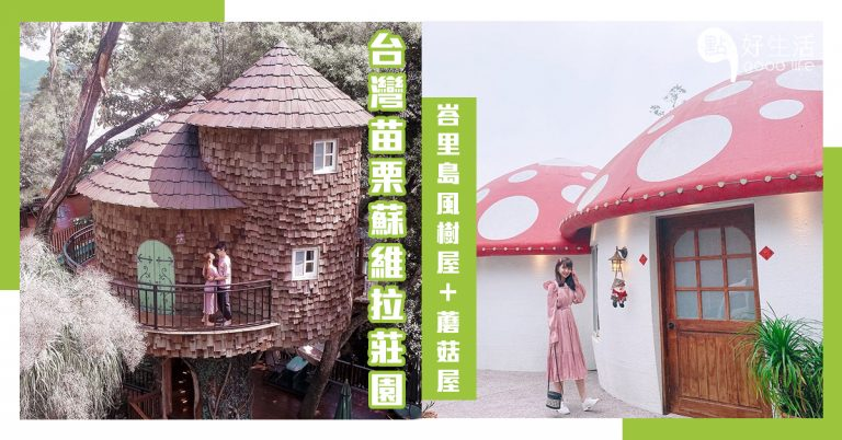 【滿滿魔法奇幻感】台灣苗栗蘇維拉莊園!來一場不一樣的森林探險,處處都充滿驚喜~峇里島風樹屋+童趣蘑菇屋+超剌激森林溜滑梯+恐龍園