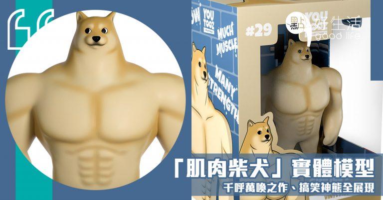 千呼萬喚之作:網絡流傳的「肌肉柴犬」竟推出實體模型!搞笑神態全展現,非常值得收藏。