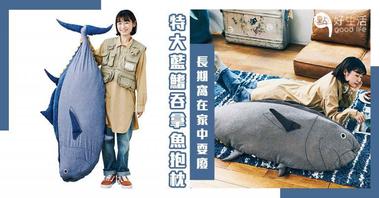 懶人必備!日本Felissimo推出「特大藍鰭吞拿魚抱枕」超適合長期窩在家盡情耍廢,非常可愛!