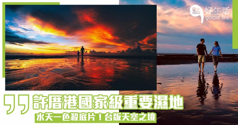 【美得太殺底片了】台灣桃園許厝港國家級重要濕地!生態旅遊愛好者必到,水天一色被稱為台版天空之鏡!可觀賞到逾1000隻的水鳥的壯觀奇景
