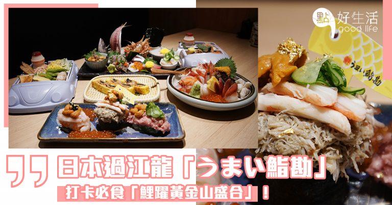 一止日本旅行癮!日本過江龍「うまい鮨勘」推出黃金鯉魚祭限定,打卡必食「鯉躍黃金山盛合」!