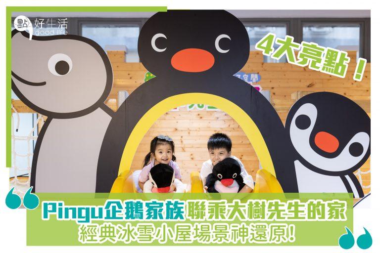Pingu企鵝家族 X 大樹先生的家,經典冰雪小屋場景神還原!4大亮點!
