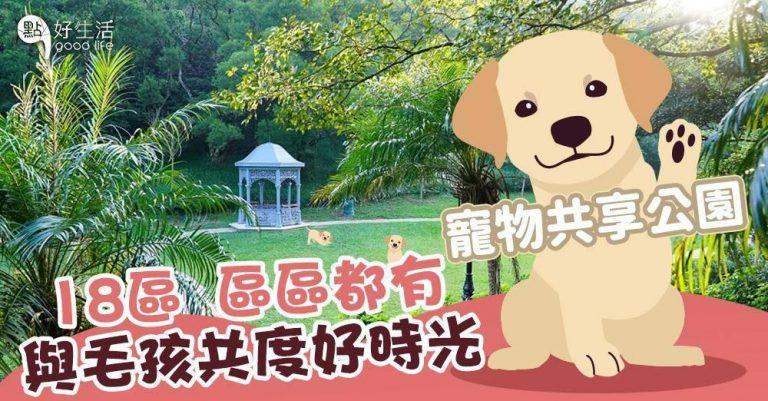 一文睇清35個今年新增的寵物共享公園!18區,區區都有!建構人與寵物共融環境