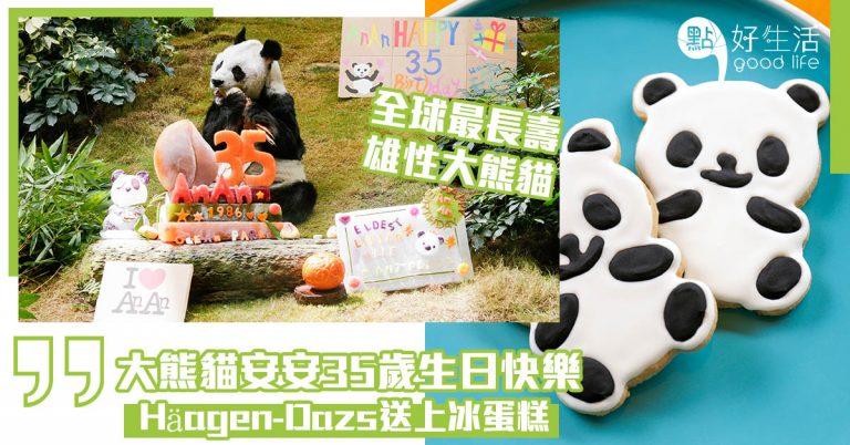 大熊貓安安35歲,生日快樂!!Häagen-Dazs送上冰蛋糕